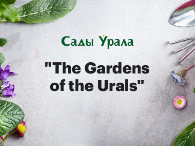 Case study: Redesign of the website for The Gardens of the Urals